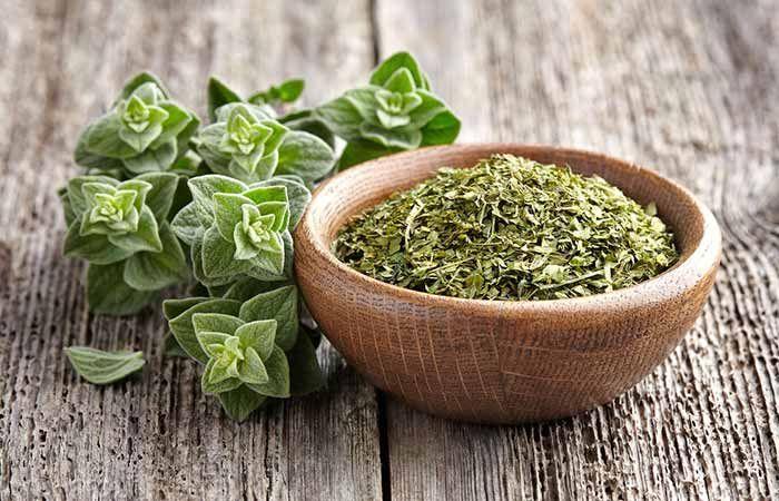 Remedy For Amoebiasis – Oregano Herb