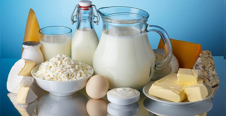 High Fat Dairy Products Gout