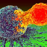 what types of cancer can be treated with immunotherapy?