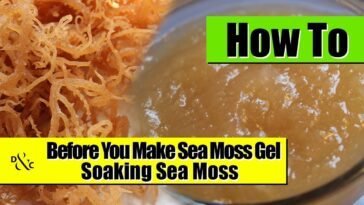 Soaking Sea Moss